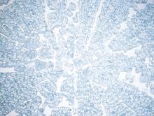 「強化ガラス割れ方」の画像検索結果